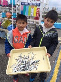 和歌山マリーナシティ海釣り公園 サビキでイワシの釣果