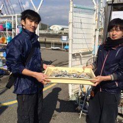 和歌山マリーナシティ海釣り公園 サビキでイワシ好調