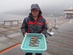 須磨海釣り公園 ウキ流しでメバル4尾