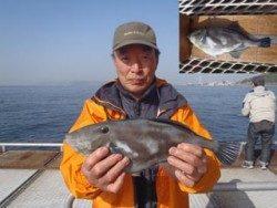 神戸市立須磨海づり公園 ウマヅラハギ35.5cmの釣果