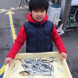 和歌山マリーナシティ海釣り公園 イワシ釣れて楽しかった!