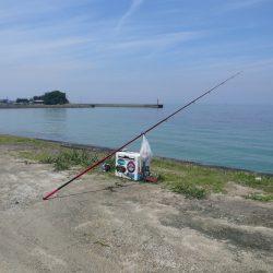 成が島釣行後に西淡釣査