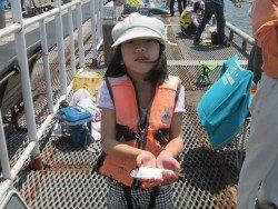 尼崎市立魚つり公園 サビキ釣りでイワシ・サッパ