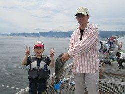 尼崎市立魚つり公園 ズボ釣りでチヌ43cm!