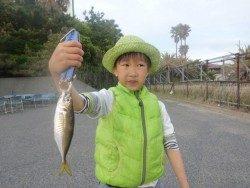大阪南港海釣り公園 ガシラが強いです