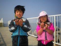 姫路市立遊魚センター 探り釣りでガシラ、アイナメ