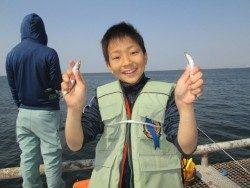 尼崎市立魚つり公園 サビキイワシとエビ撒きハネの釣果