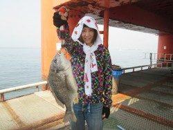 尼崎市立魚つり公園 46cm良型キビレ!