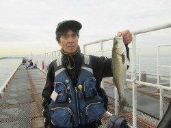 尼崎市立魚つり公園 45〜51cmのハネをキャッチ