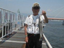 尼崎市立魚つり公園 棚を深くしてのハネ釣果