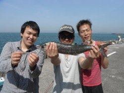 和歌山北港魚つり公園サゴシ52cm