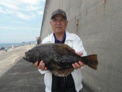 和歌山北港魚つり公園 良型マダイとヒラメの釣果です♪