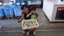 新芳養(はや)漁港  サビキでイワシ、エサ無しでも大漁!