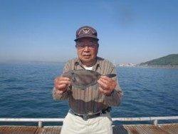 神戸市立須磨海づり公園 ウマヅラの掛け釣り