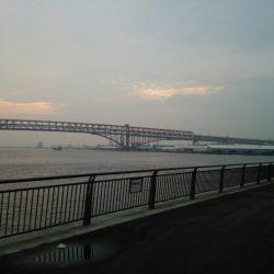 鶴浜緑地 釣り解放区