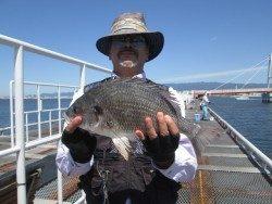 尼崎市立魚つり公園 ズボ釣りで良型キビレ