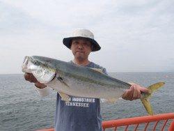 平磯海釣り公園 ウキ釣りでメジロ67cm