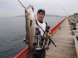 神戸市立平磯海づり公園 ハネ58cm