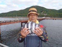 神戸市立須磨海づり公園 イシダイ32cm