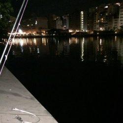 天神橋筋高架下にウナギ釣り
