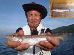 神戸市立須磨海づり公園 投げ釣りでキス27.6cm!