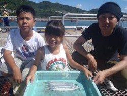須磨海釣り公園 サビキでサヨリの釣果出てます