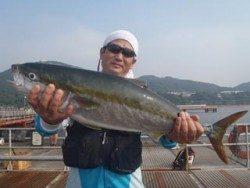 神戸市立須磨海づり公園 メジロ 74.8cm!
