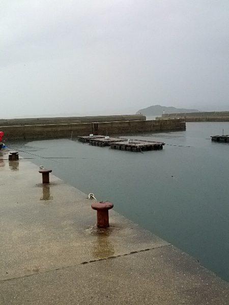 雨中のふかせ釣り