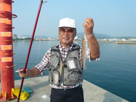 津名港の良型キス