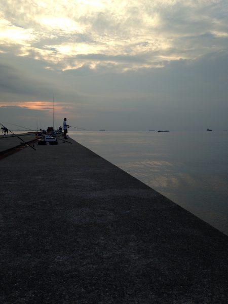 神戸沖堤釣行