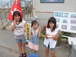 大阪南港海釣り公園 釣果はアジ中心
