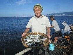 尼崎市魚つり公園 サビキでイワシ・サッパ・アジなど好調