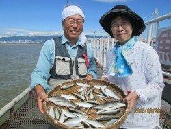 尼崎市立魚つり公園 サビキまだまだ好調!