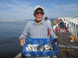 尼崎市立魚つり公園 今日もサビキ好調です