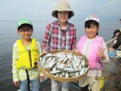 尼崎市立魚つり公園、サッパとイワシは午前中