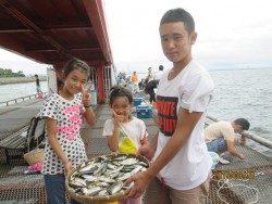 今日もサッパ★尼崎市立魚つり公園