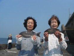 和歌山北港魚つり公園 イサキ28~30㎝