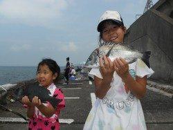 和歌山北港魚つり公園 良型チヌ、グレでニッコリ