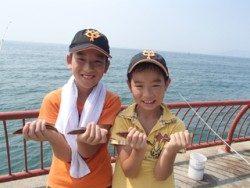 平磯海釣り公園 胴突仕掛でベラ19尾