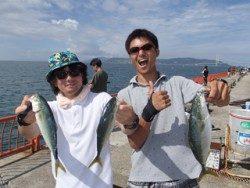 平磯海釣り公園 ルアーでツバス3尾の釣果