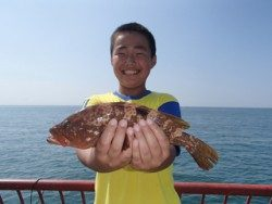 平磯海釣り公園 ノマセでアコウ33cm