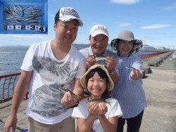 神戸市立平磯海づり公園 サビキでイワシ、アジ