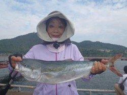 須磨海釣り公園 のませでメジロ60cm