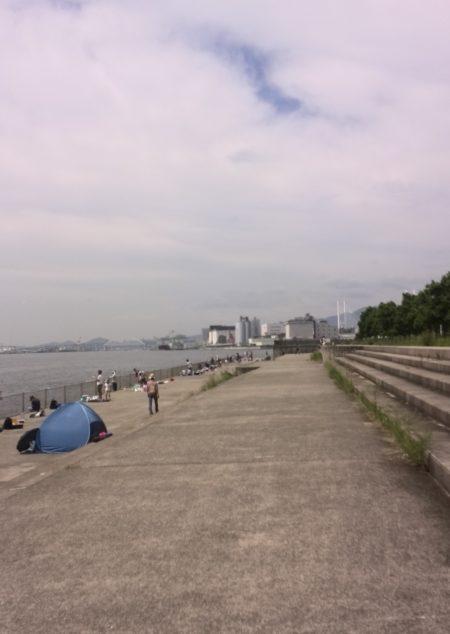 南芦屋浜のサヨリちゃん☆