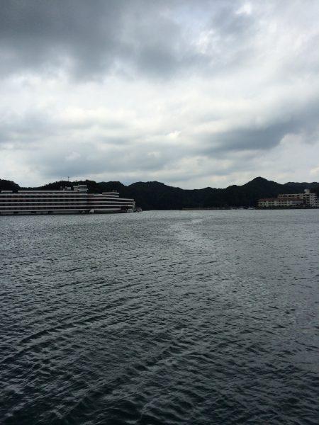 今日も、勝浦港へ