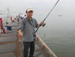 尼崎市立魚つり公園 サヨリも釣れてます