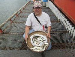 悪天でもサビキ釣果は好調!尼崎市立魚つり公園