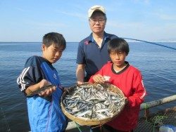 尼崎市立魚つり公園 サビキでアジ・イワシ、ウルメとマイワシまじり