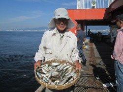 尼崎市立魚つり公園 サビキまだまだ好調