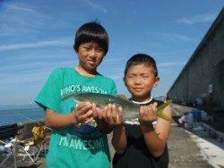 和歌山北港魚つり公園 良型アジをキャッチ